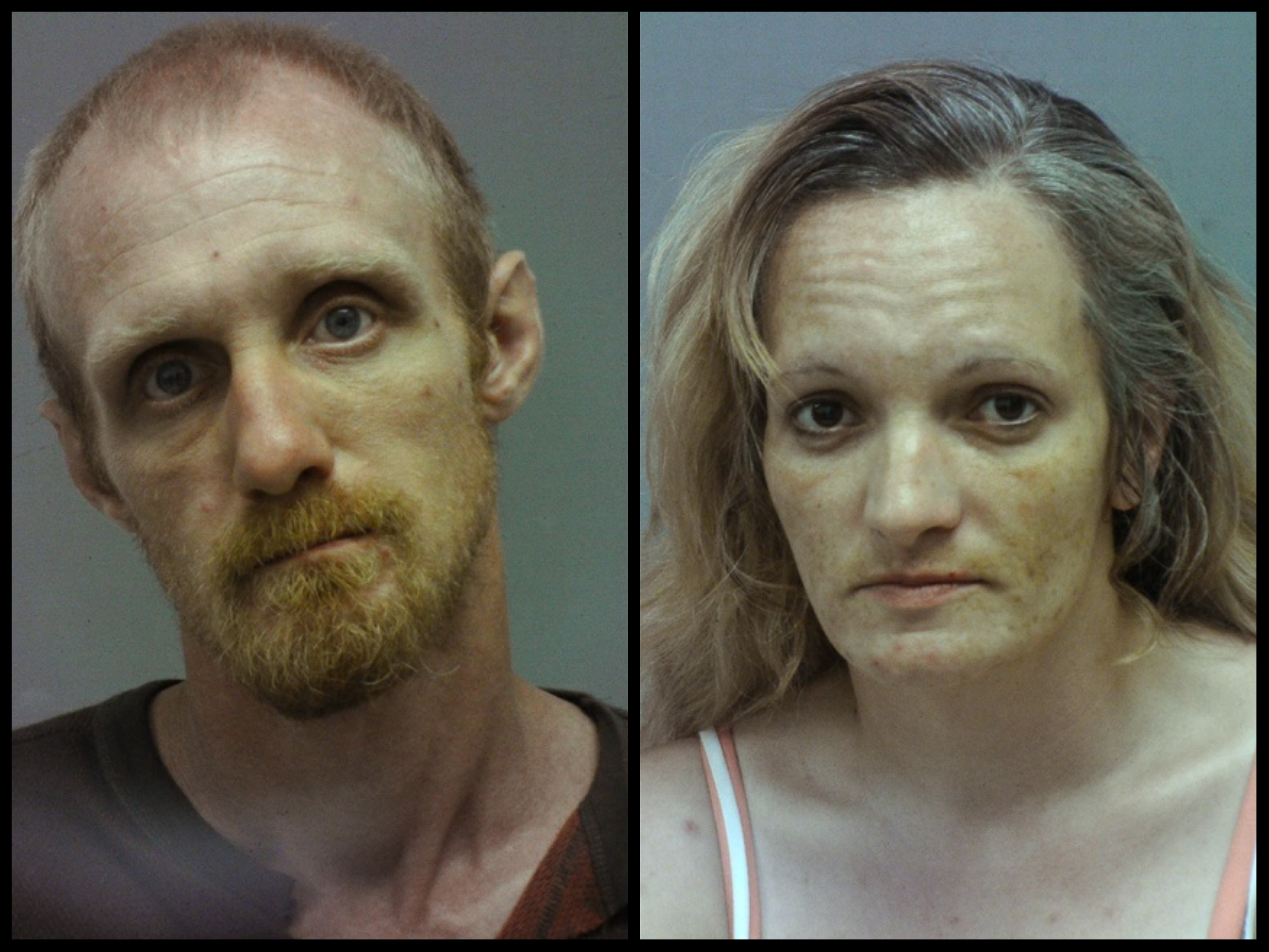 Two arrested in connection with string of thefts and